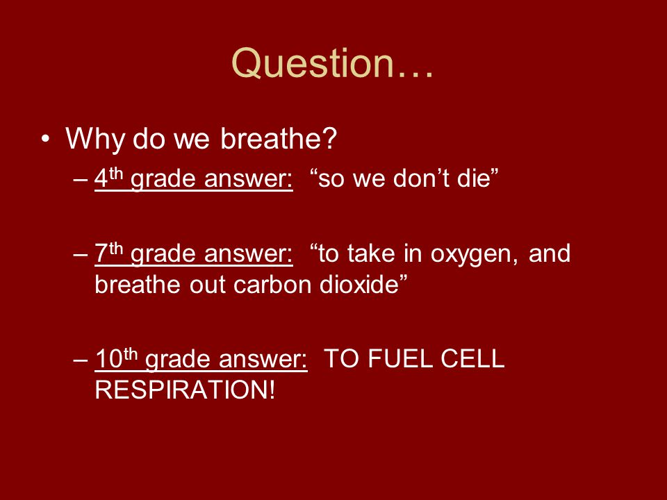 """Question… Why do we breathe? –4 th grade answer: """"so we don't die"""" –7 th grade answer: """"to take in oxygen, and breathe out carbon dioxide"""" –10 th grad"""