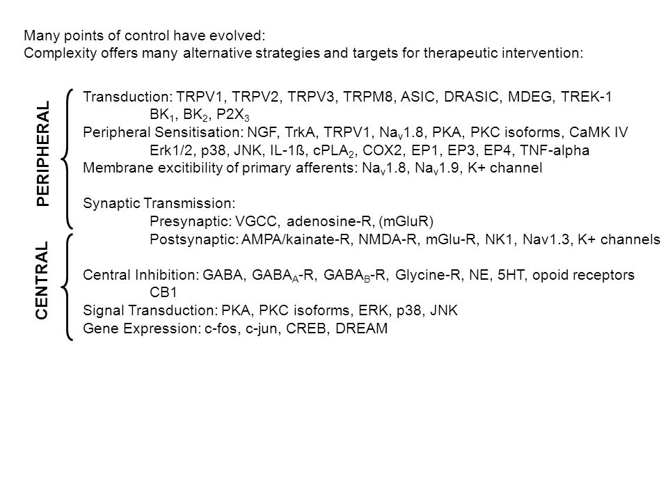 Many points of control have evolved: Complexity offers many alternative strategies and targets for therapeutic intervention: Transduction: TRPV1, TRPV2, TRPV3, TRPM8, ASIC, DRASIC, MDEG, TREK-1 BK 1, BK 2, P2X 3 Peripheral Sensitisation: NGF, TrkA, TRPV1, Na v 1.8, PKA, PKC isoforms, CaMK IV Erk1/2, p38, JNK, IL-1ß, cPLA 2, COX2, EP1, EP3, EP4, TNF-alpha Membrane excitibility of primary afferents: Na v 1.8, Na v 1.9, K+ channel Synaptic Transmission: Presynaptic: VGCC, adenosine-R, (mGluR) Postsynaptic: AMPA/kainate-R, NMDA-R, mGlu-R, NK1, Nav1.3, K+ channels Central Inhibition: GABA, GABA A -R, GABA B -R, Glycine-R, NE, 5HT, opoid receptors CB1 Signal Transduction: PKA, PKC isoforms, ERK, p38, JNK Gene Expression: c-fos, c-jun, CREB, DREAM PERIPHERAL CENTRAL