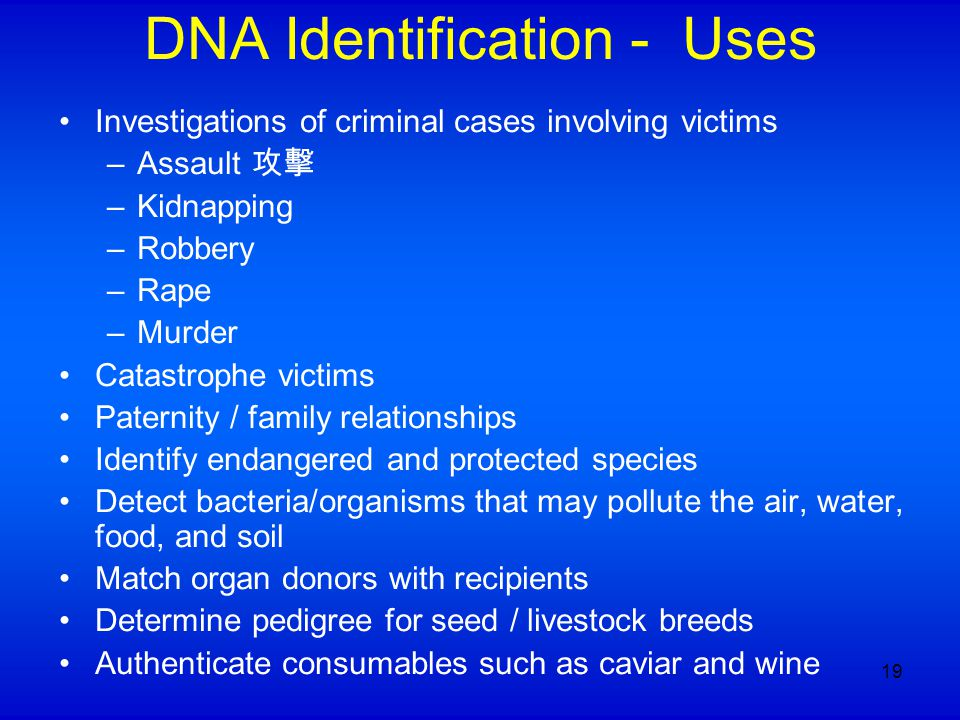 DNA Identification - Uses Investigations of criminal cases involving victims –Assault 攻擊 –Kidnapping –Robbery –Rape –Murder Catastrophe victims Patern