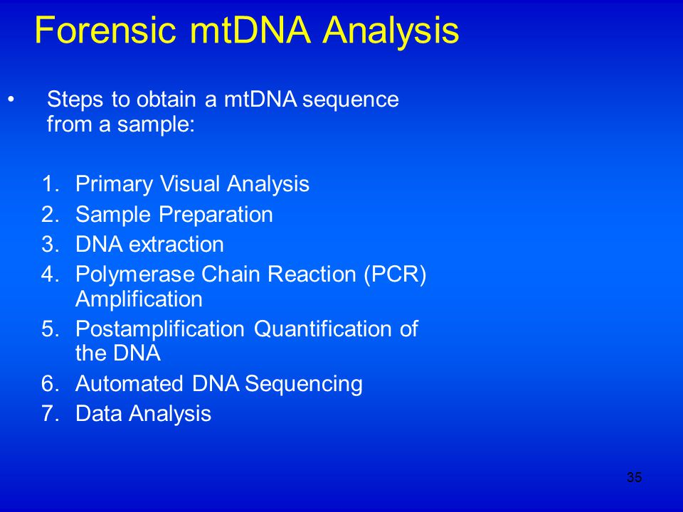 Forensic mtDNA Analysis Steps to obtain a mtDNA sequence from a sample: 1.Primary Visual Analysis 2.Sample Preparation 3.DNA extraction 4.Polymerase Chain Reaction (PCR) Amplification 5.Postamplification Quantification of the DNA 6.Automated DNA Sequencing 7.Data Analysis 35