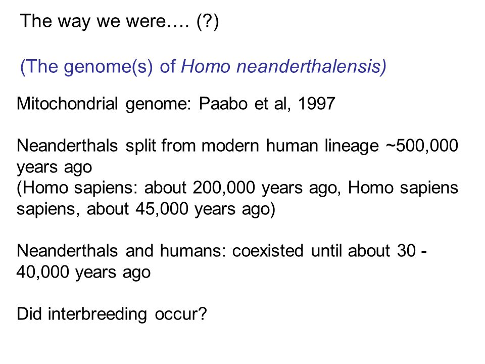 The way we were…. (?) (The genome(s) of Homo neanderthalensis) Mitochondrial genome: Paabo et al, 1997 Neanderthals split from modern human lineage ~5