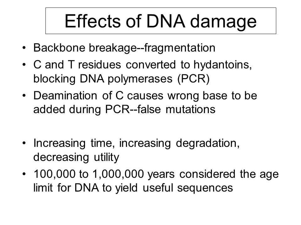 Effects of DNA damage Backbone breakage--fragmentation C and T residues converted to hydantoins, blocking DNA polymerases (PCR) Deamination of C cause
