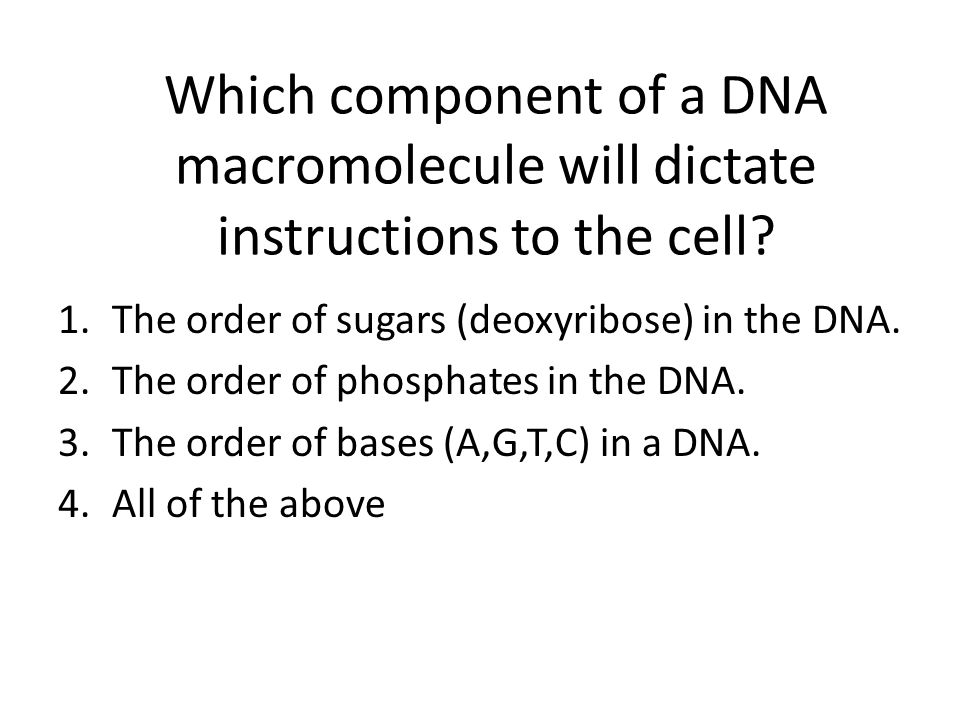 Which component of a DNA macromolecule will dictate instructions to the cell? 1.The order of sugars (deoxyribose) in the DNA. 2.The order of phosphate