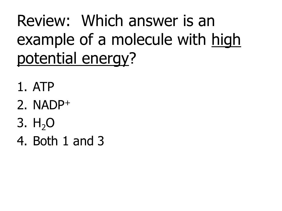 Review: Which answer is an example of a molecule with high potential energy? 1.ATP 2.NADP + 3.H 2 O 4.Both 1 and 3