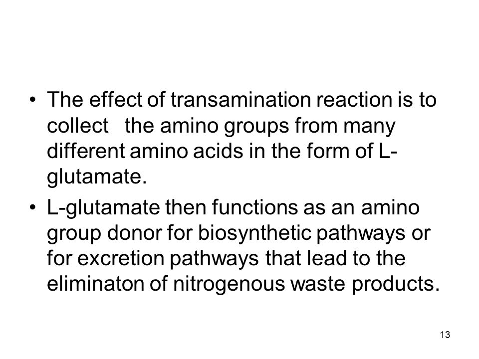 The effect of transamination reaction is to collect the amino groups from many different amino acids in the form of L- glutamate. L-glutamate then fun