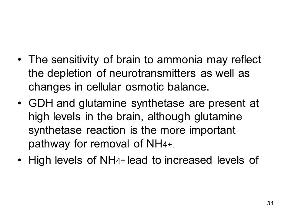 The sensitivity of brain to ammonia may reflect the depletion of neurotransmitters as well as changes in cellular osmotic balance. GDH and glutamine s
