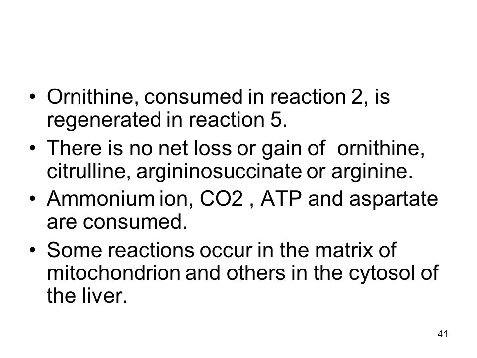 Ornithine, consumed in reaction 2, is regenerated in reaction 5. There is no net loss or gain of ornithine, citrulline, argininosuccinate or arginine.