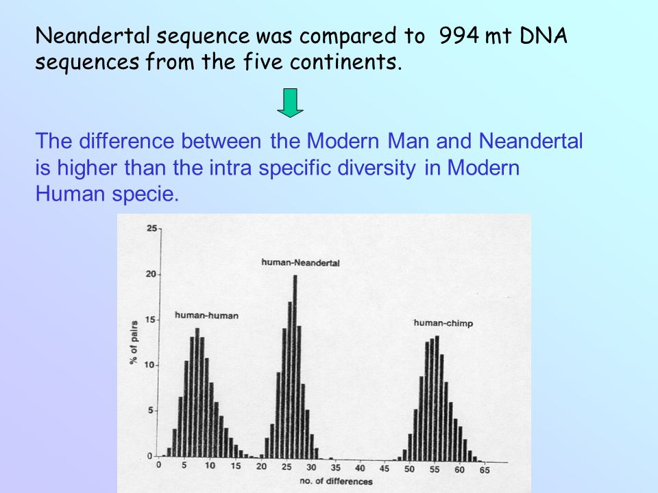 Neandertal sequence was compared to 994 mt DNA sequences from the five continents.