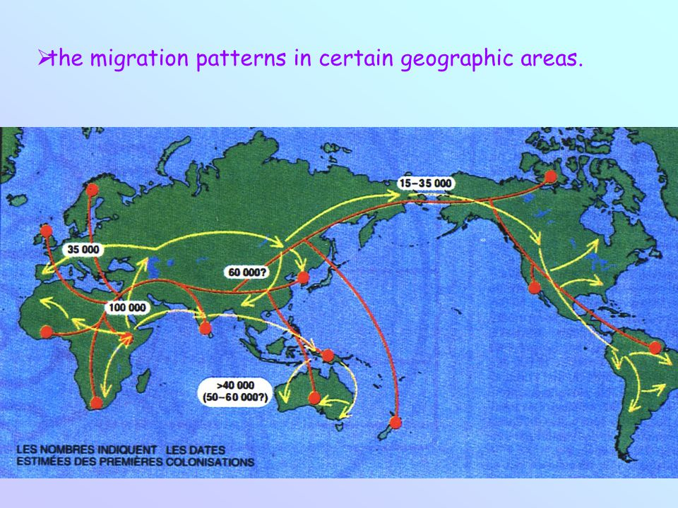  the migration patterns in certain geographic areas.
