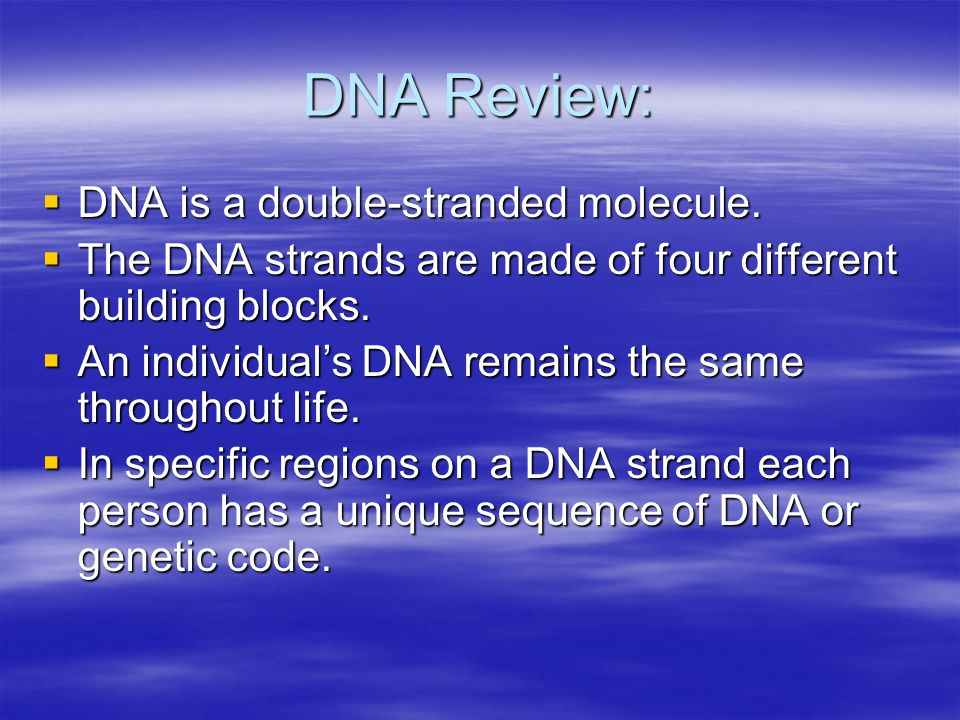 DNA Review:  DNA is a double-stranded molecule.