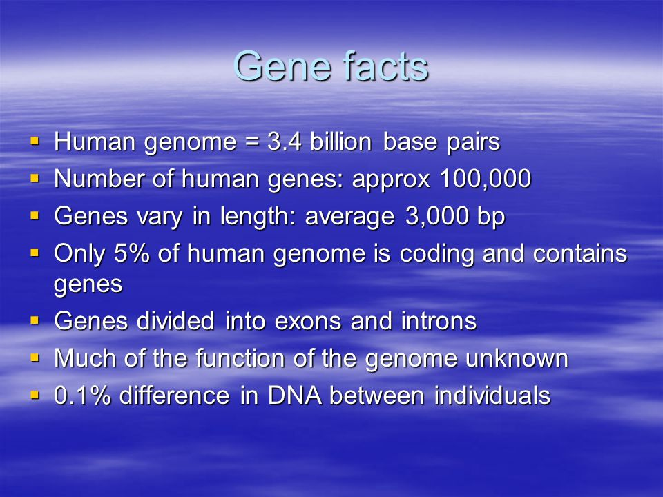 Gene facts  Human genome = 3.4 billion base pairs  Number of human genes: approx 100,000  Genes vary in length: average 3,000 bp  Only 5% of human genome is coding and contains genes  Genes divided into exons and introns  Much of the function of the genome unknown  0.1% difference in DNA between individuals