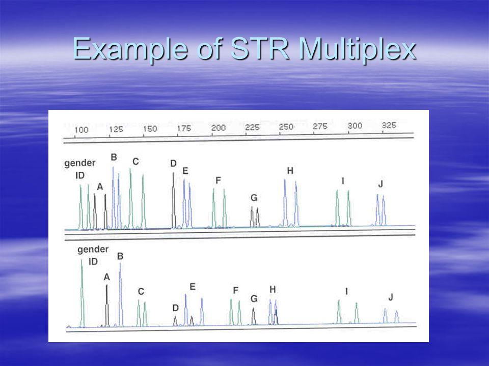 Example of STR Multiplex