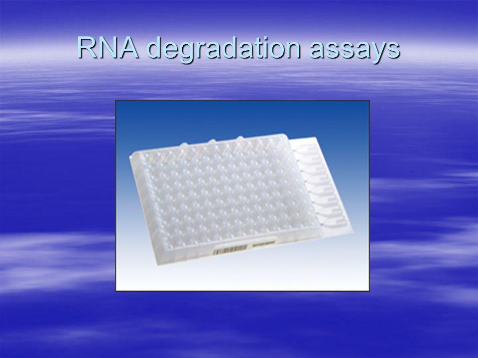RNA degradation assays