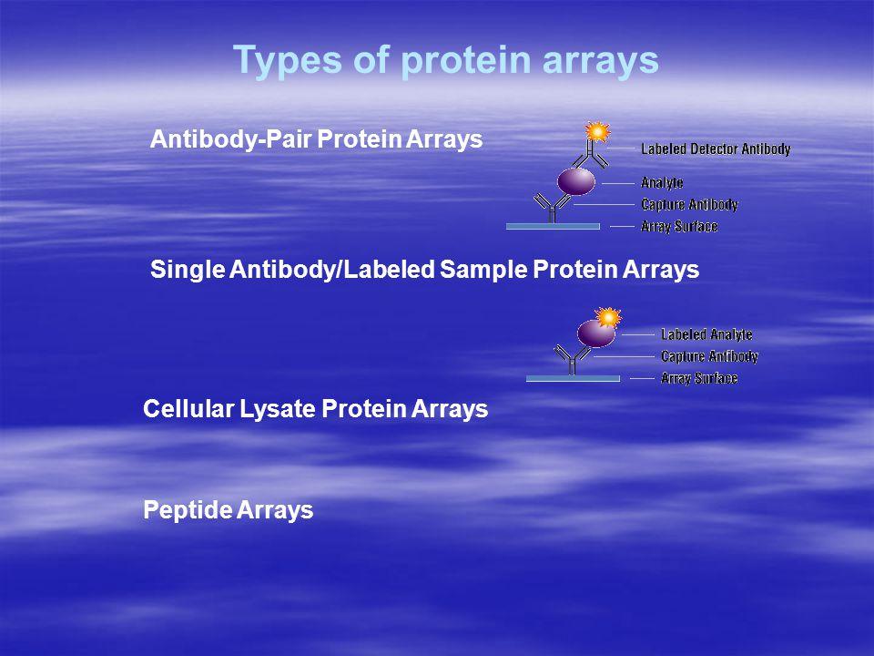 Antibody-Pair Protein Arrays Single Antibody/Labeled Sample Protein Arrays Types of protein arrays Cellular Lysate Protein Arrays Peptide Arrays
