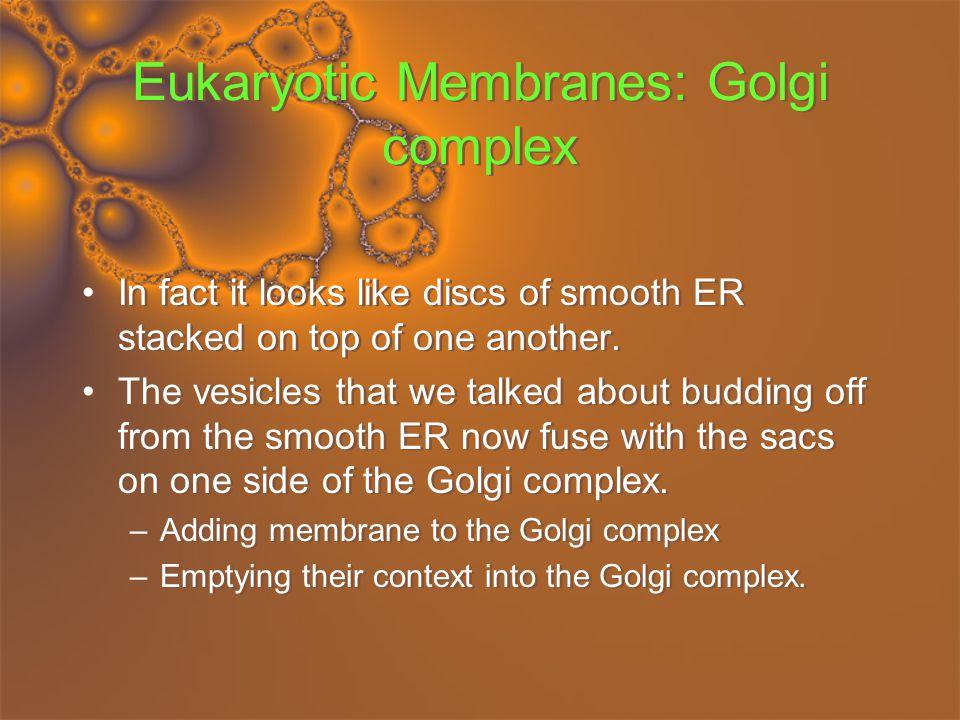 Eukaryotic Membranes: Golgi complex
