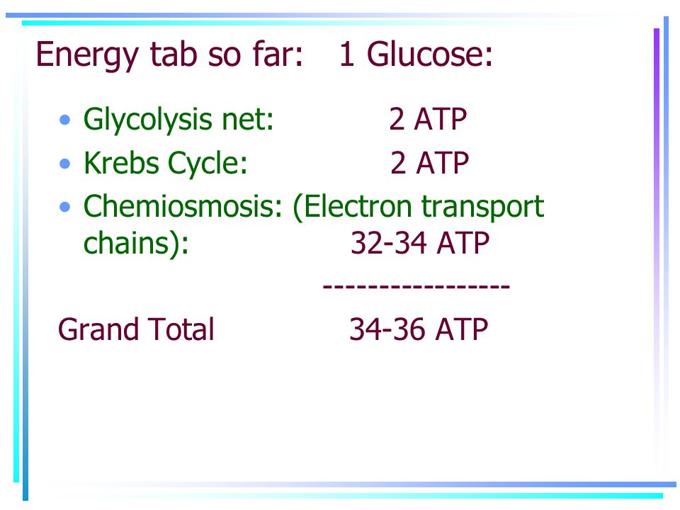 Energy tab so far: 1 Glucose: Glycolysis net: 2 ATP Krebs Cycle: 2 ATP Chemiosmosis: (Electron transport chains): 32-34 ATP ----------------- Grand Total 34-36 ATP
