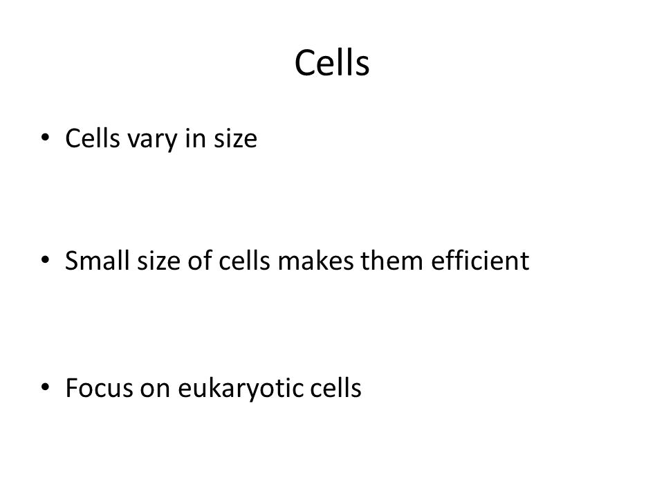 Cells Cells vary in size Small size of cells makes them efficient Focus on eukaryotic cells