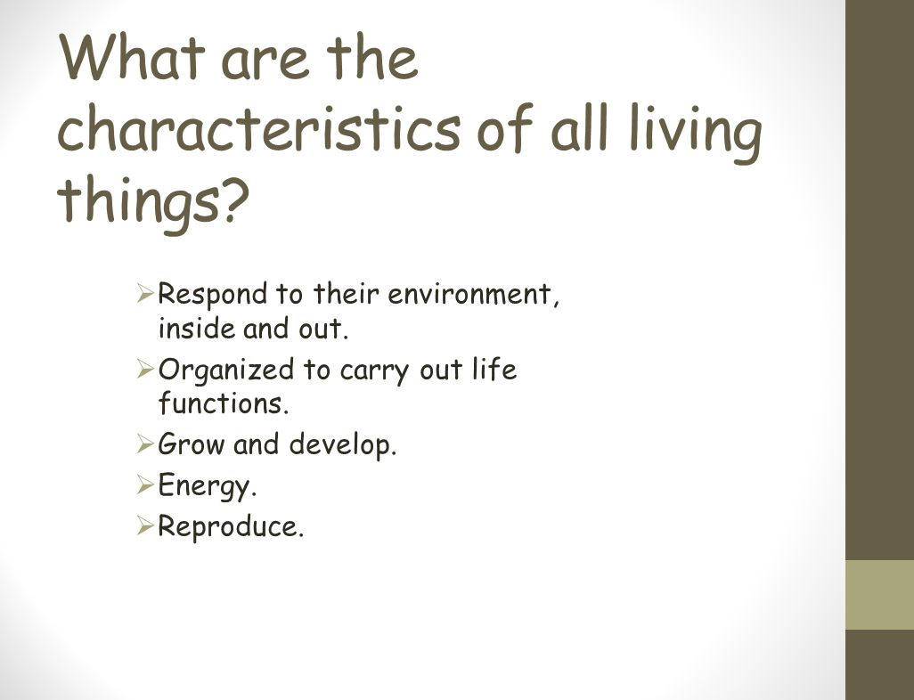 What are the characteristics of all living things?  Respond to their environment, inside and out.  Organized to carry out life functions.  Grow and