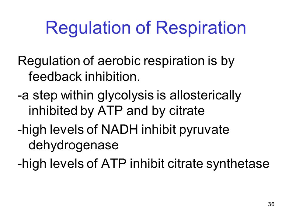 36 Regulation of Respiration Regulation of aerobic respiration is by feedback inhibition. -a step within glycolysis is allosterically inhibited by ATP