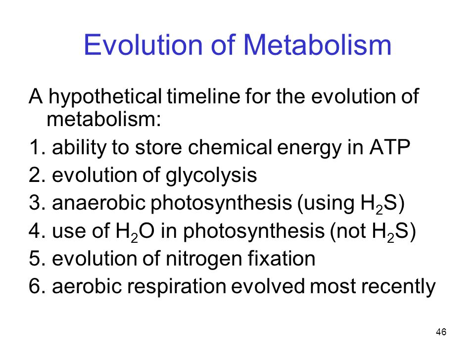 46 Evolution of Metabolism A hypothetical timeline for the evolution of metabolism: 1.