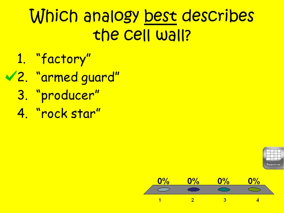 Which analogy best describes the cell wall 1. factory 2. armed guard 3. producer 4. rock star