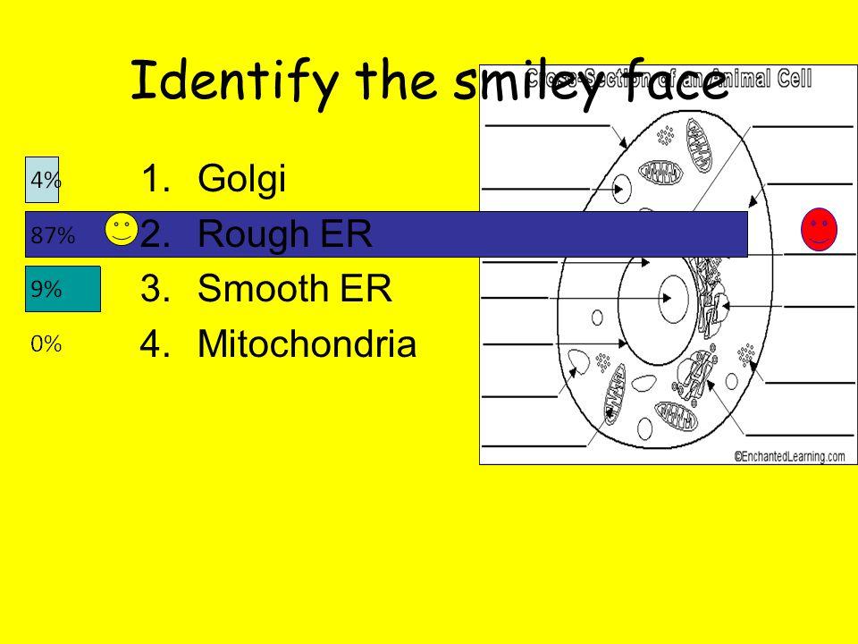 Identify the smiley face 1.Golgi 2.Rough ER 3.Smooth ER 4.Mitochondria