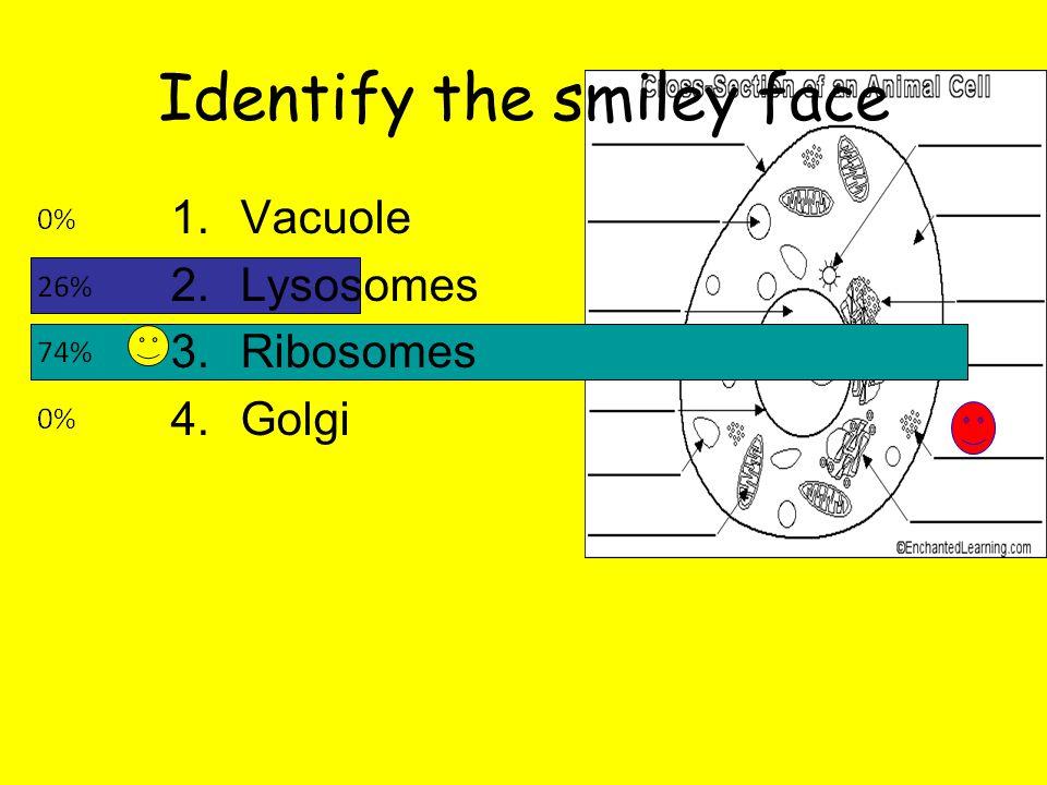 Identify the smiley face 1.Vacuole 2.Lysosomes 3.Ribosomes 4.Golgi