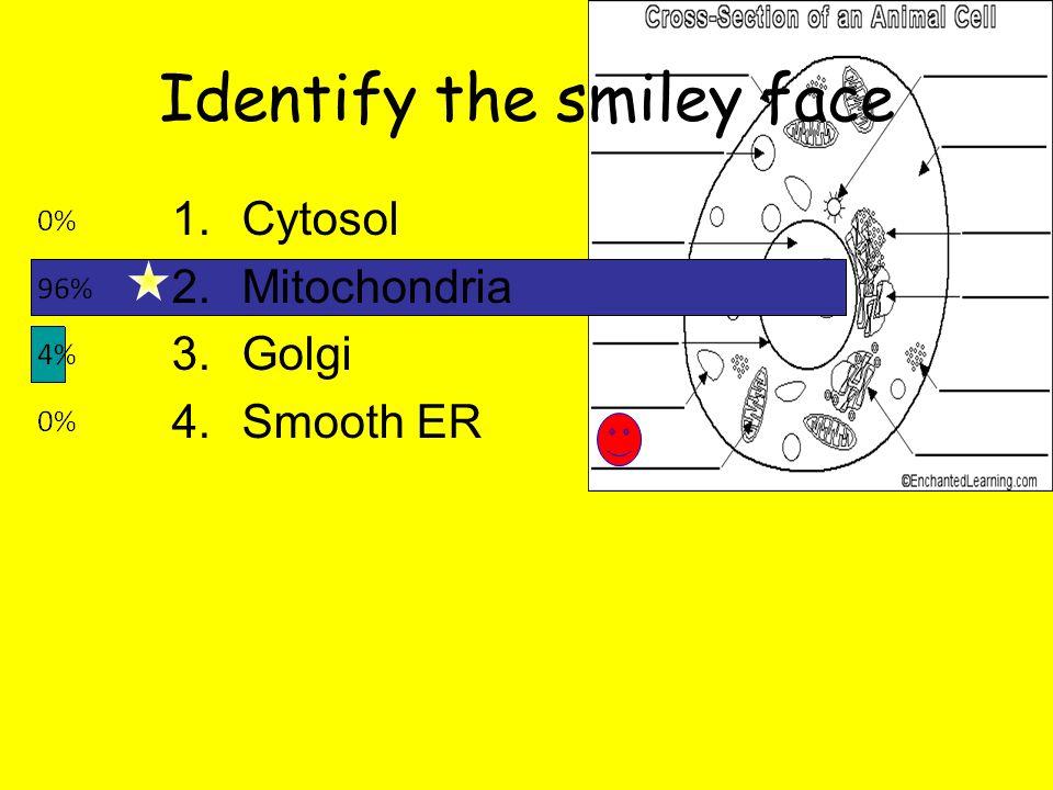 Identify the smiley face 1.Cytosol 2.Mitochondria 3.Golgi 4.Smooth ER
