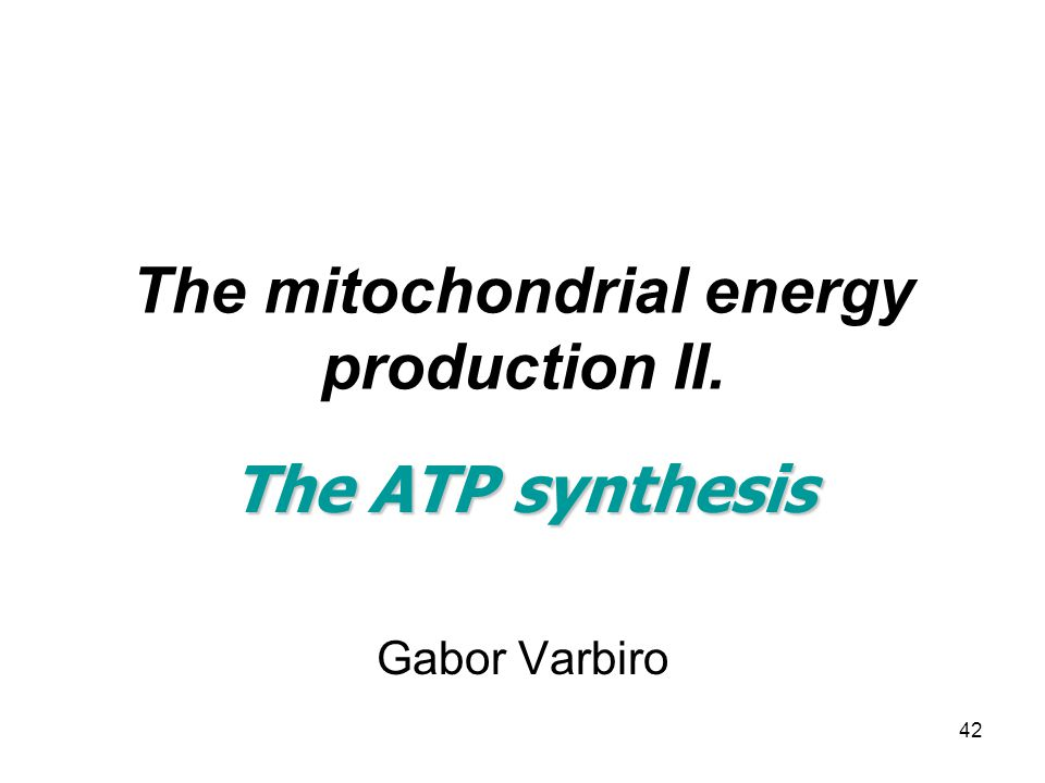 42 The mitochondrial energy production II. The ATP synthesis Gabor Varbiro