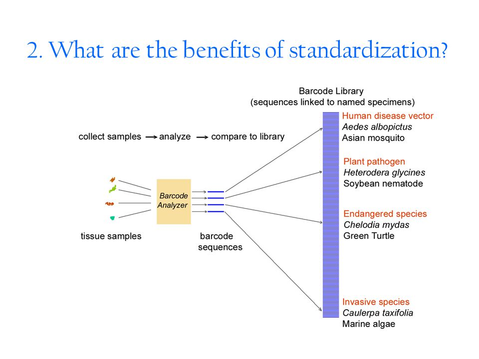 2. What are the benefits of standardization?
