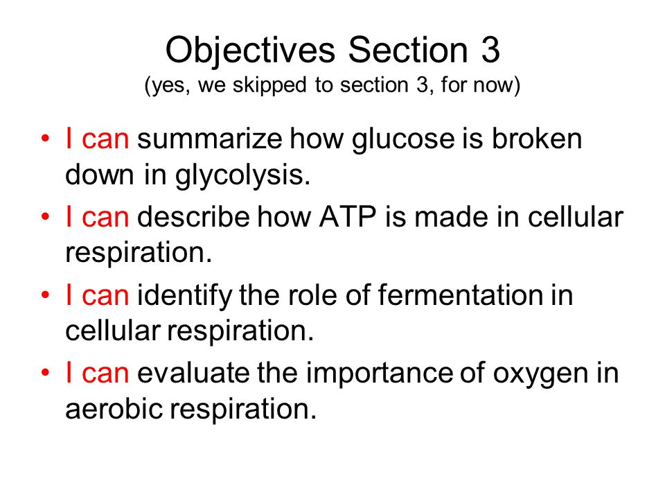 Objectives Section 3 (yes, we skipped to section 3, for now) I can summarize how glucose is broken down in glycolysis.