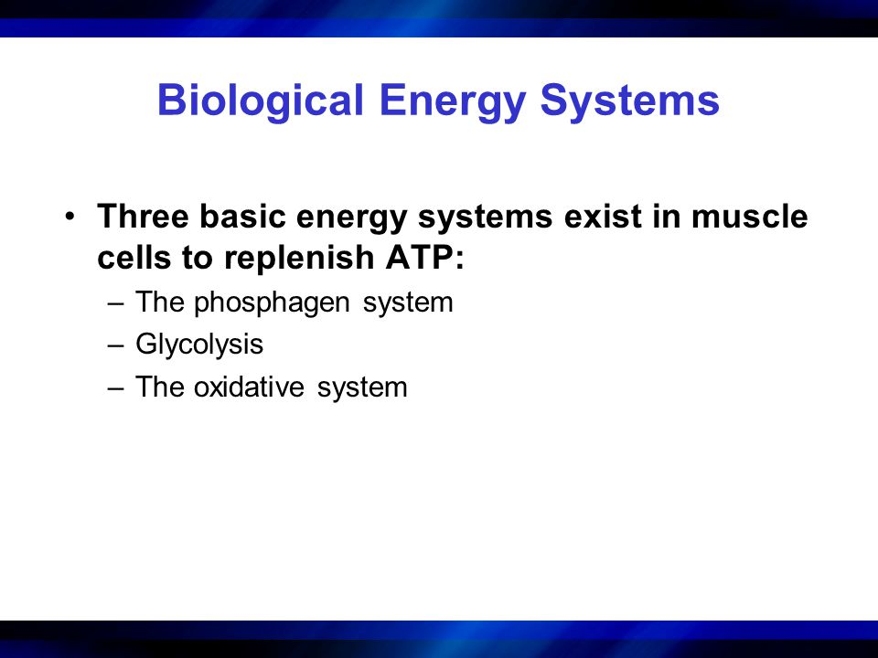 Biological Energy Systems Three basic energy systems exist in muscle cells to replenish ATP: –The phosphagen system –Glycolysis –The oxidative system