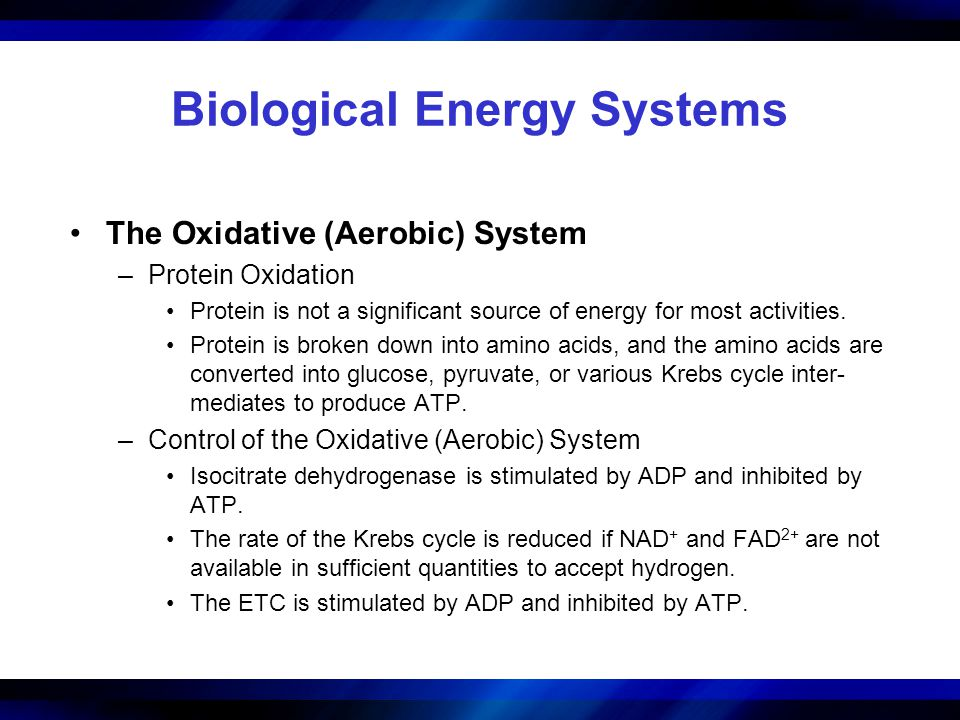 Biological Energy Systems The Oxidative (Aerobic) System –Protein Oxidation Protein is not a significant source of energy for most activities. Protein
