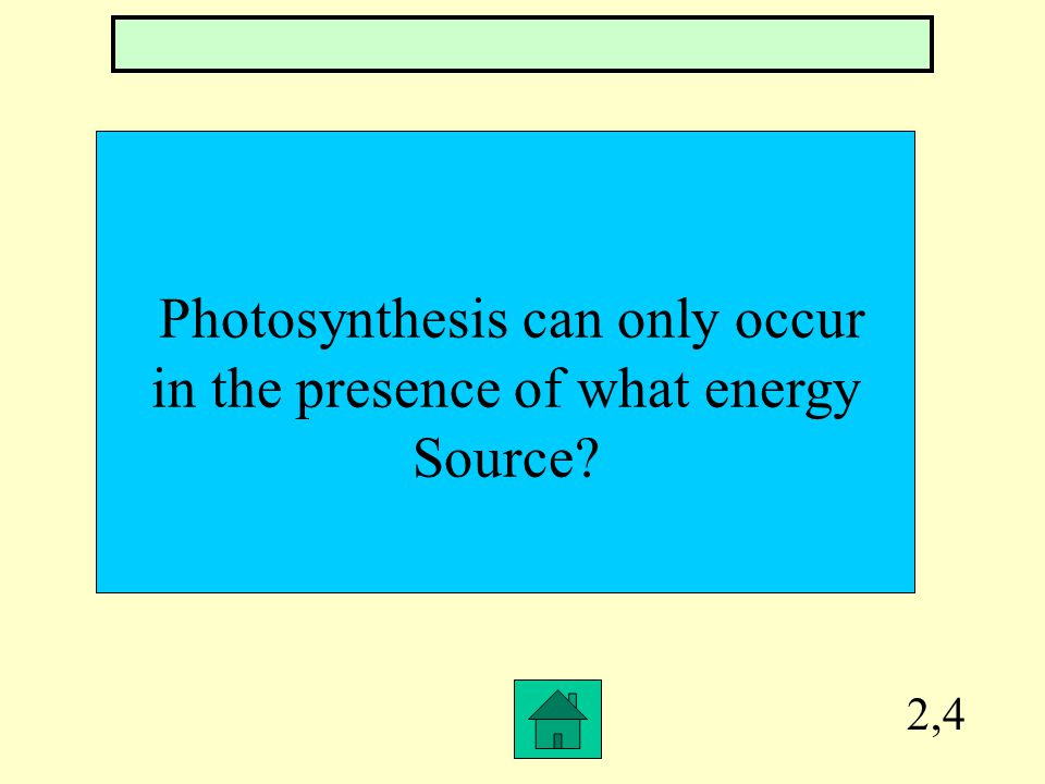 2,3 What is the photosynthetic organ of a plant