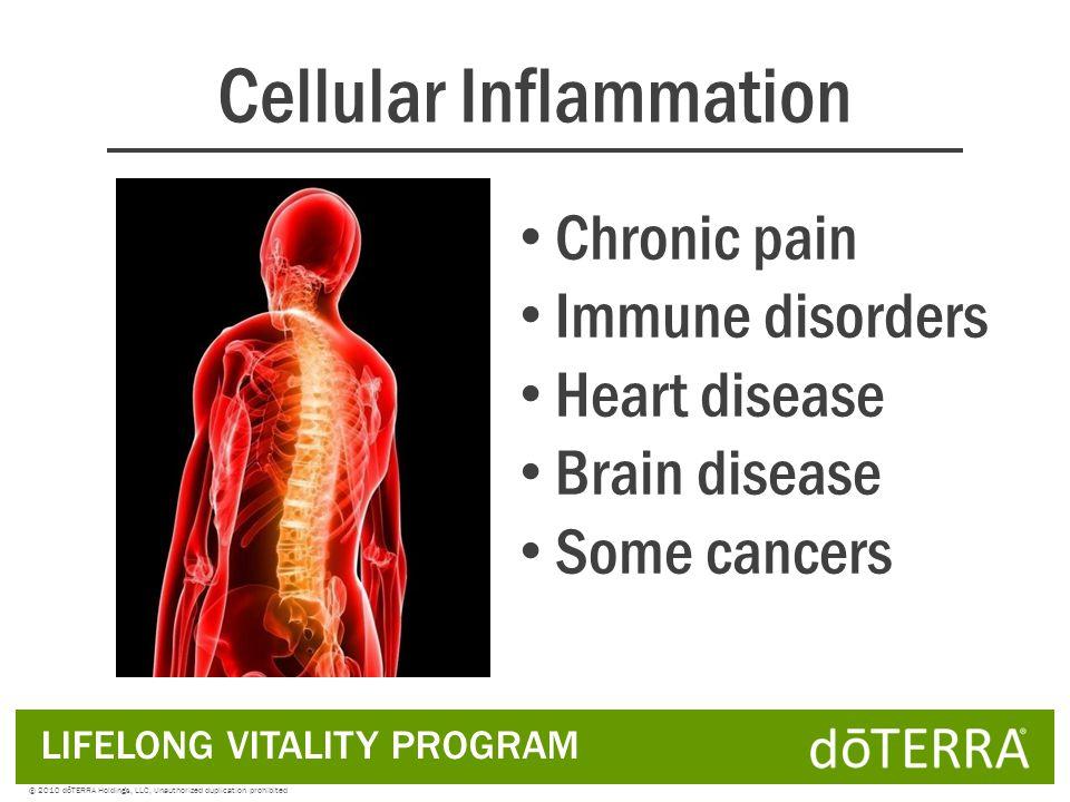 Omega 6 Pro-inflammatory LIFELONG VITALITY PROGRAM © 2010 dōTERRA Holdings, LLC, Unauthorized duplication prohibited Essential Fatty Acids (EFAs)