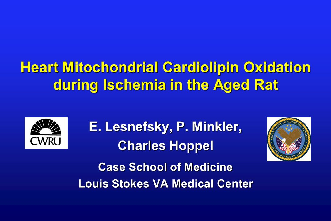 Heart Mitochondrial Cardiolipin Oxidation during Ischemia in the Aged Rat E.