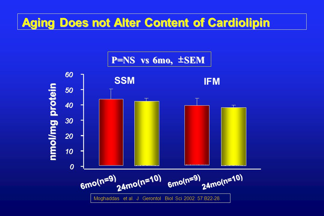 Aging Does not Alter Content of Cardiolipin SSM 6mo(n=9) IFM 6mo(n=9) 24mo(n=10) P=NS vs 6mo,   SEM 0 0 10 20 30 40 50 60 nmol/mg protein Moghaddas et al.