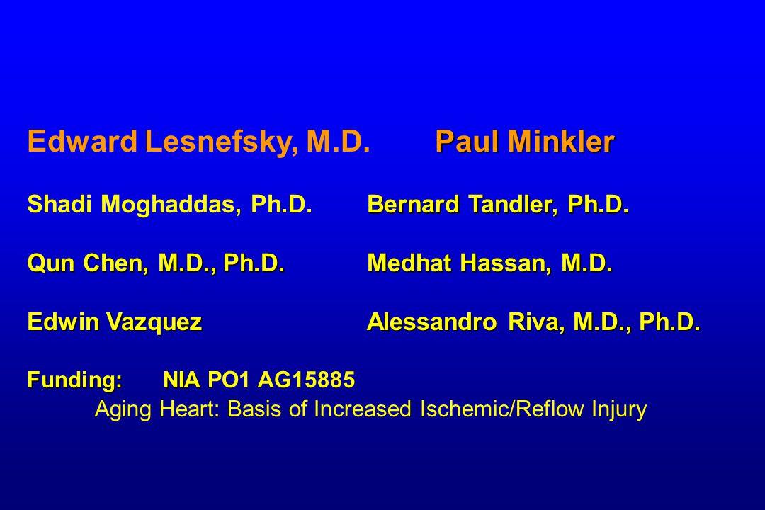 Paul Minkler Edward Lesnefsky, M.D. Paul Minkler Bernard Tandler, Ph.D.