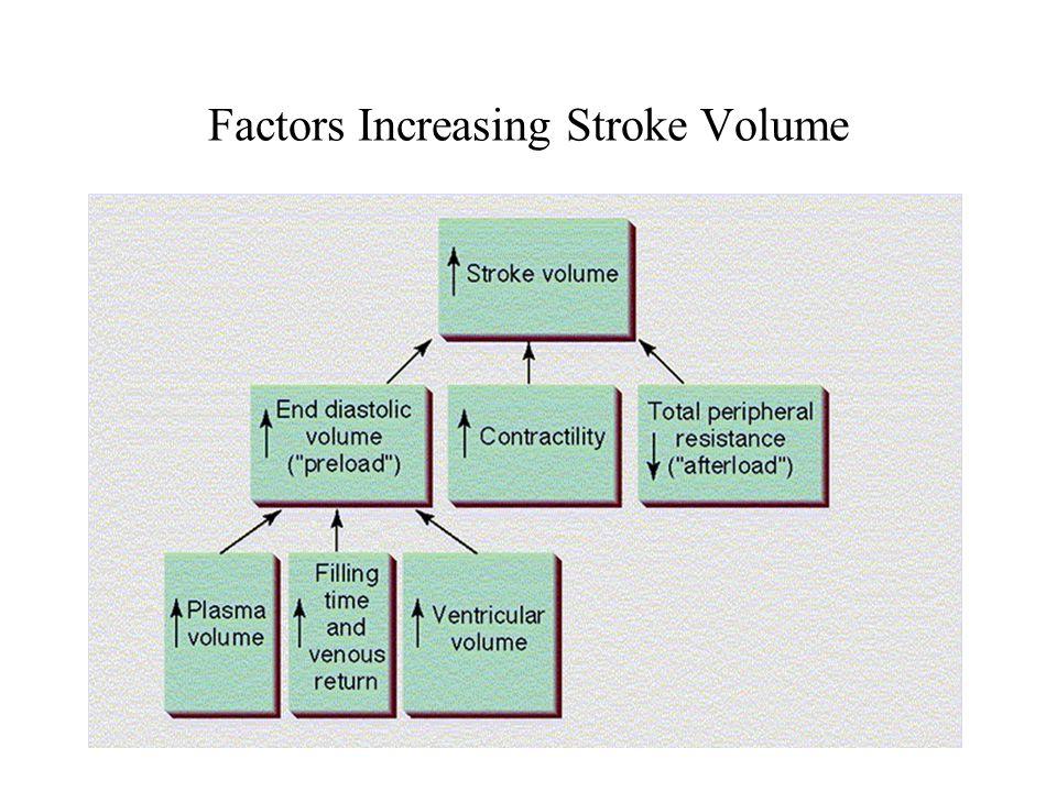 Factors Increasing Stroke Volume