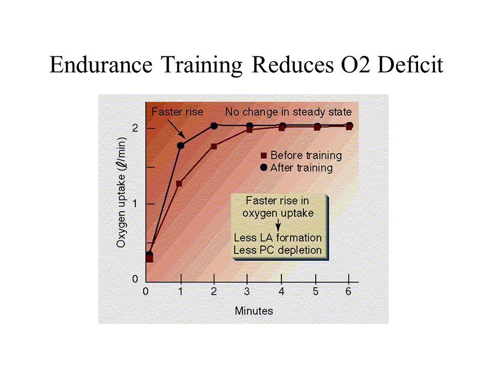 Endurance Training Reduces O2 Deficit
