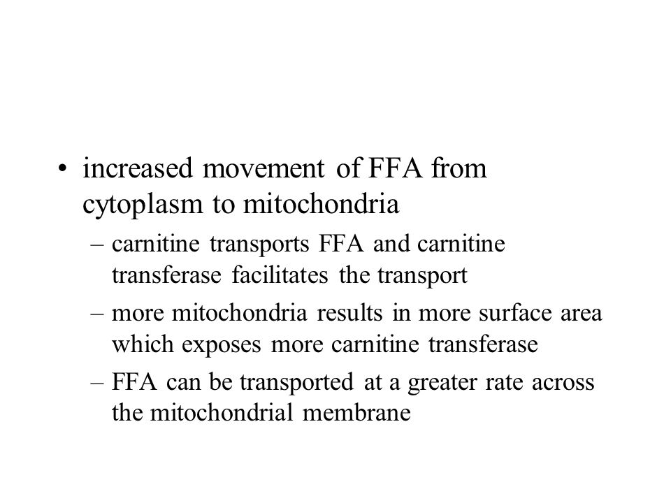 increased movement of FFA from cytoplasm to mitochondria –carnitine transports FFA and carnitine transferase facilitates the transport –more mitochondria results in more surface area which exposes more carnitine transferase –FFA can be transported at a greater rate across the mitochondrial membrane