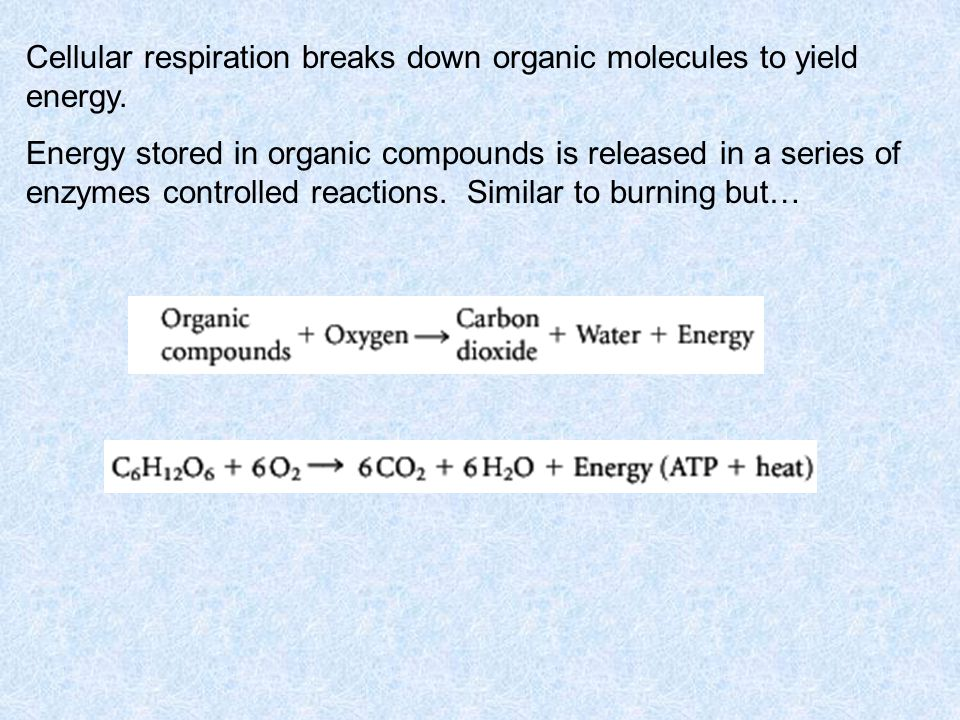 WITH OXYGEN Cellular respiration is the process __________________________________ __________________________________ _____________ It is composed of –Glycolysis –_______________________