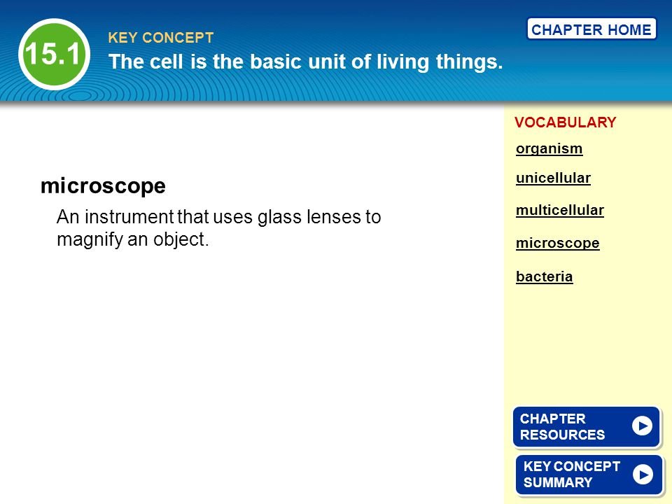 VOCABULARY KEY CONCEPT CHAPTER HOME An instrument that uses glass lenses to magnify an object.