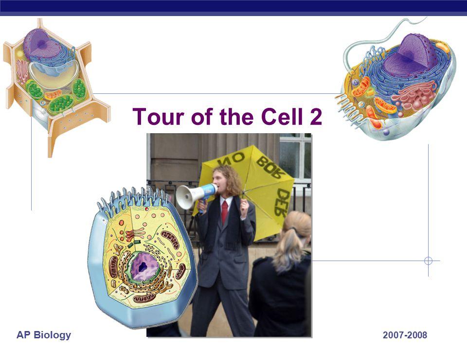 AP Biology Food & water storage plant cells central vacuole contractile vacuole food vacuoles animal cells