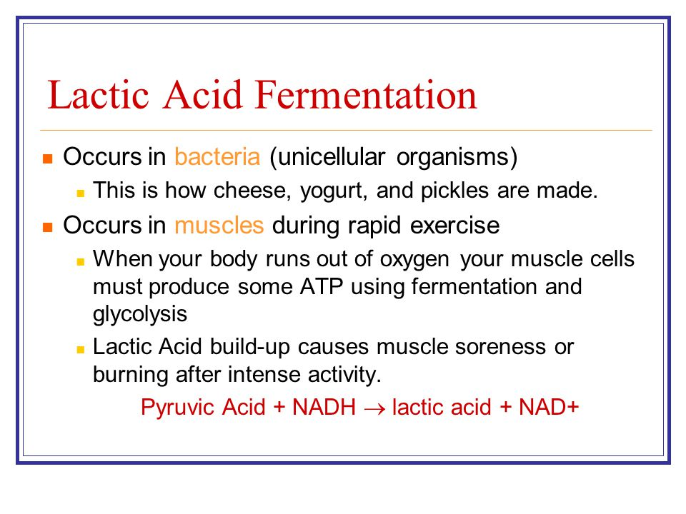 Lactic Acid Fermentation Occurs in bacteria (unicellular organisms) This is how cheese, yogurt, and pickles are made. Occurs in muscles during rapid e