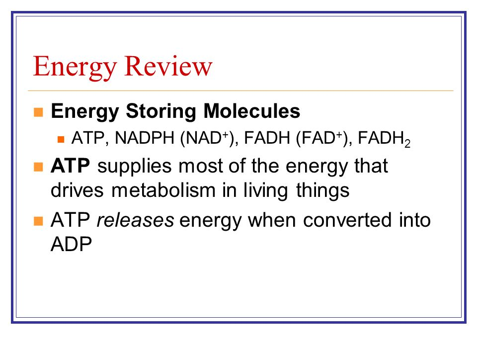 Energy Review Energy Storing Molecules ATP, NADPH (NAD + ), FADH (FAD + ), FADH 2 ATP supplies most of the energy that drives metabolism in living thi