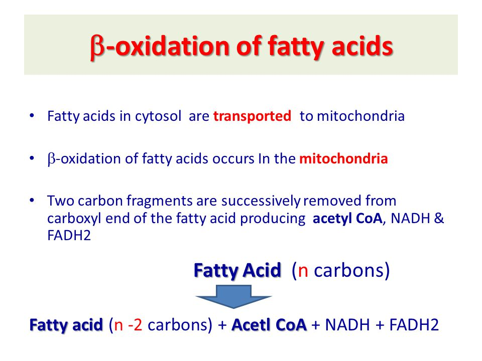  -oxidation of fatty acids Fatty acids in cytosol are transported to mitochondria  -oxidation of fatty acids occurs In the mitochondria Two carbon fragments are successively removed from carboxyl end of the fatty acid producing acetyl CoA, NADH & FADH2 Fatty Acid Fatty Acid (n carbons) Fatty acid Acetl CoA Fatty acid (n -2 carbons) + Acetl CoA + NADH + FADH2