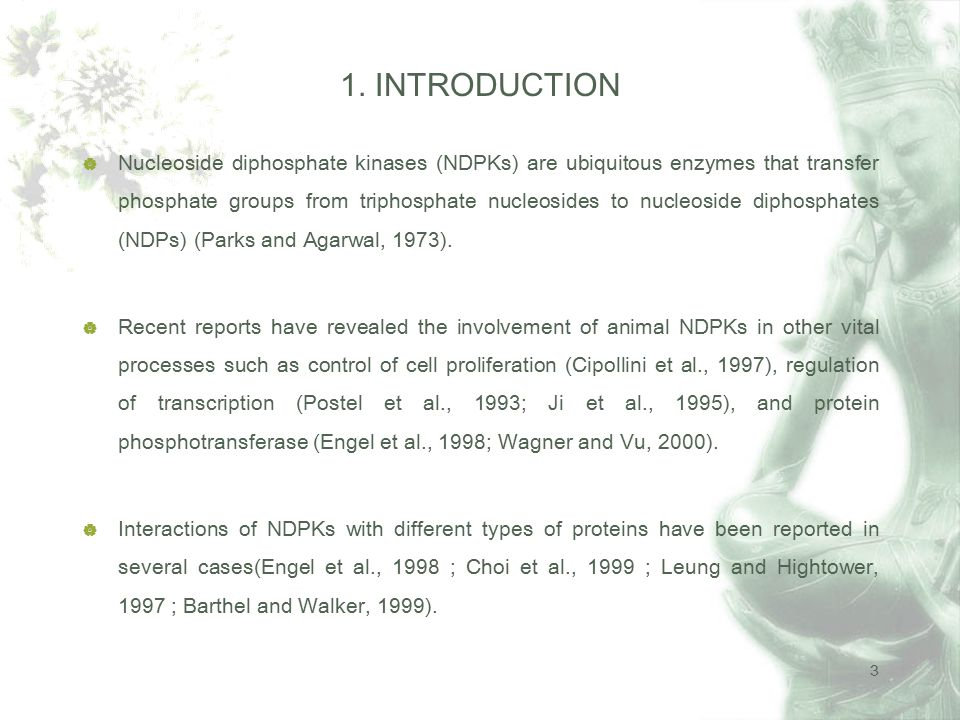3  Nucleoside diphosphate kinases (NDPKs) are ubiquitous enzymes that transfer phosphate groups from triphosphate nucleosides to nucleoside diphosphates (NDPs) (Parks and Agarwal, 1973).
