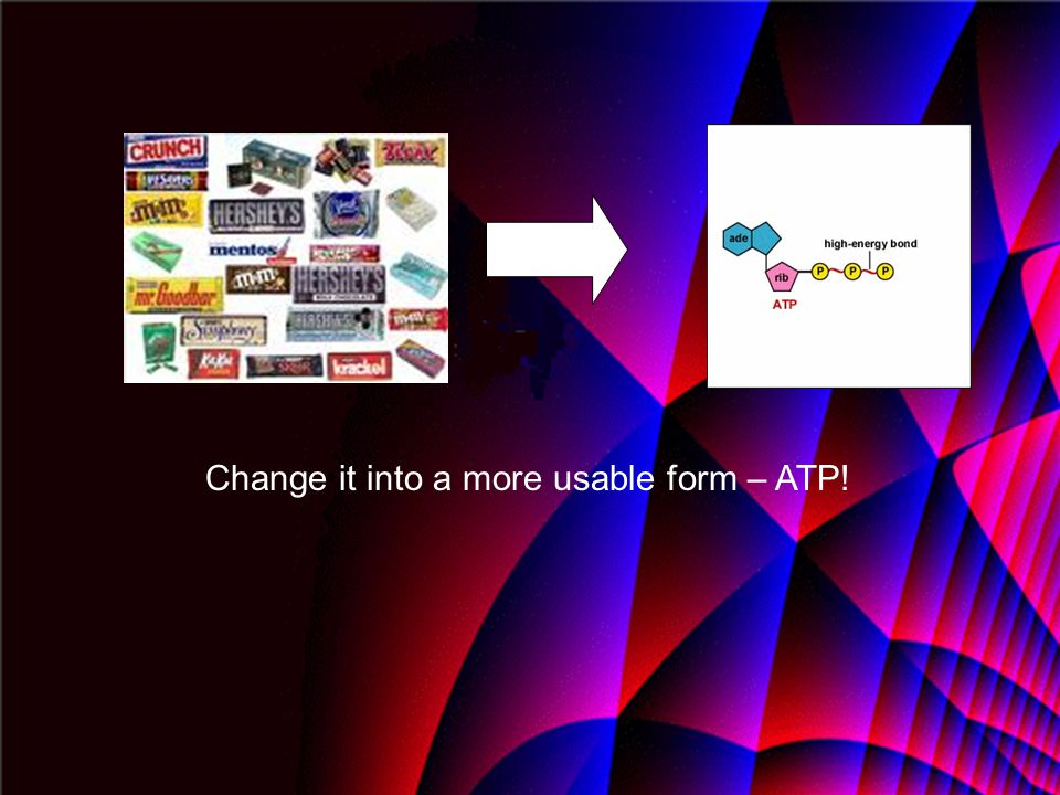 Change it into a more usable form – ATP!