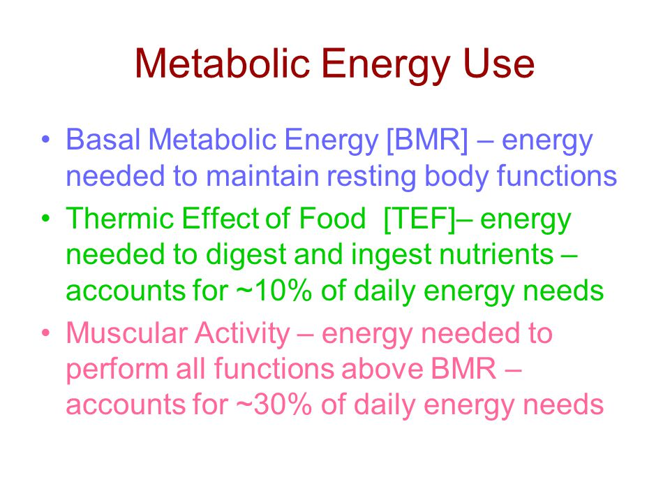 Metabolic Energy Use Basal Metabolic Energy [BMR] – energy needed to maintain resting body functions Thermic Effect of Food [TEF]– energy needed to digest and ingest nutrients – accounts for ~10% of daily energy needs Muscular Activity – energy needed to perform all functions above BMR – accounts for ~30% of daily energy needs